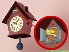 aid5390196-728px-Set-a-Cuckoo-Clock-Step-2